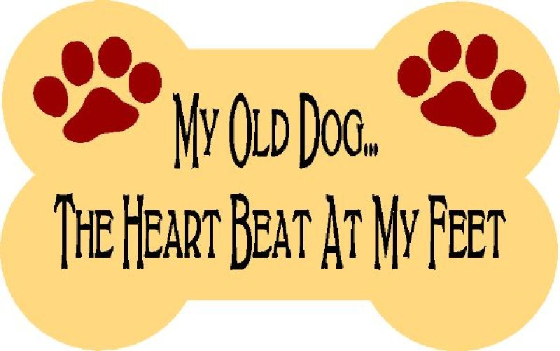 My Old Dog The Heart Beat At My Feet