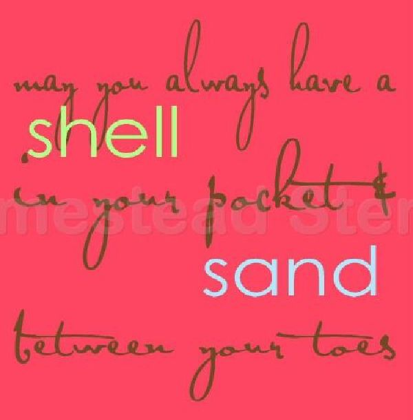 May You Always Have a Shell
