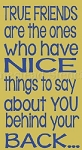 True Friends Are The Ones Who Have Nice Things To Say