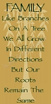 FAMILY Like Branches On A Tree We All Grow In Different Directions