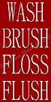 Wash Brush Floss Flush