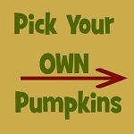 Pick Your Own Pumpkins