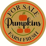For Sale Pumpkins