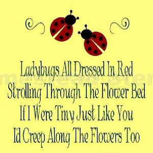 Lady Bugs All Dressed in Red