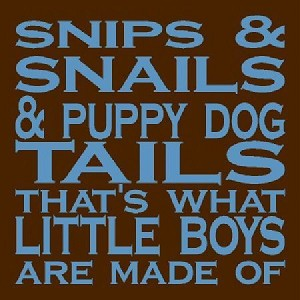 Snips, Snails, What boys are made of